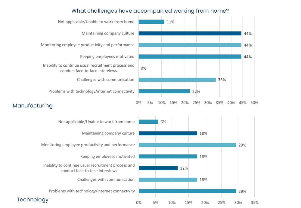 COVID-19 business survey - What challenges have accompanied working from home.jpg