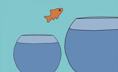 Fish jumps to bigger bowl.jpg