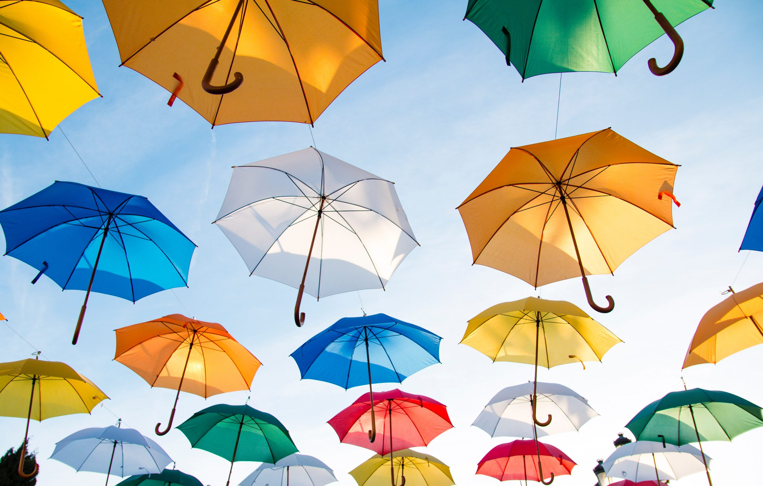 Recommended umbrella companies